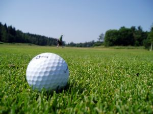 563810_golf_ball_in_the_fairway.jpg - 15.12 kB